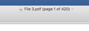 Title bar of PDF in Preview