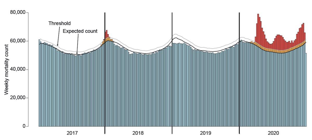 Fricker graph